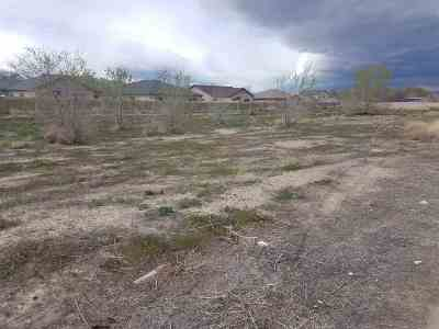 Fernley Residential Lots & Land New: 150 Shadow