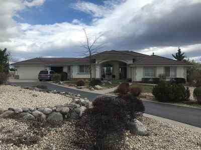 Reno Single Family Home New: 735 Flanders Rd