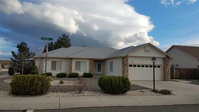 Minden NV Single Family Home For Sale: $485,000