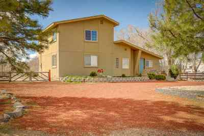 Minden NV Single Family Home For Sale: $499,999