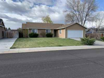 Gardnerville Single Family Home For Sale: 698 Lassen Way