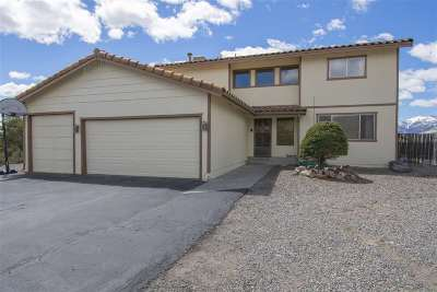 Carson City Single Family Home For Sale: 150 Heidi Circle
