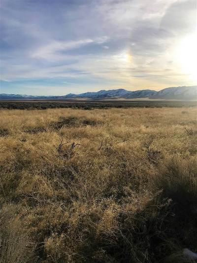 Winnemucca, Orovada, Paradise Valley, Lovelock, Imlay, Golconda Residential Lots & Land New: Dutchman Drive
