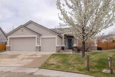 Sparks Single Family Home New: 3676 Copernicus Ct.