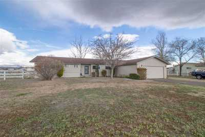 Gardnerville Single Family Home For Sale: 957 Dresslerville Rd.