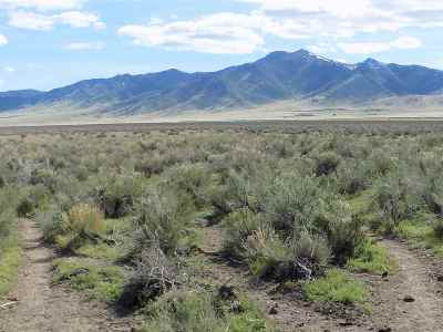 Winnemucca, Orovada, Paradise Valley, Lovelock, Imlay, Golconda Residential Lots & Land New: 3508 Baines Road
