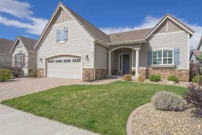 Minden NV Single Family Home Price Reduced: $599,000