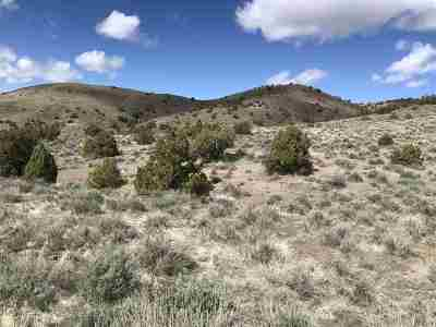 Reno Residential Lots & Land New: Carerra Dr