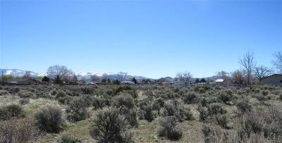 Gardnerville Residential Lots & Land For Sale: 961 Dresslerville Road