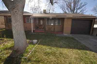 Carson City Single Family Home For Sale: 214 Albany Avenue