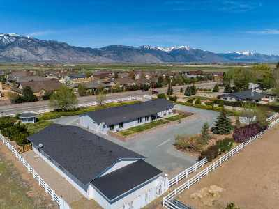 Gardnerville Single Family Home For Sale: 1139 Centerville Lane