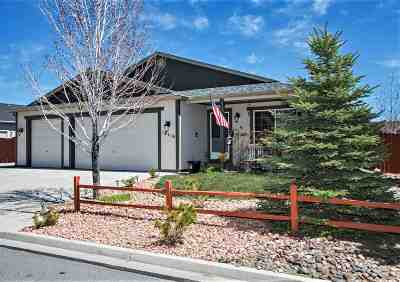 Reno Single Family Home New: 18216 Oakbrook Lane