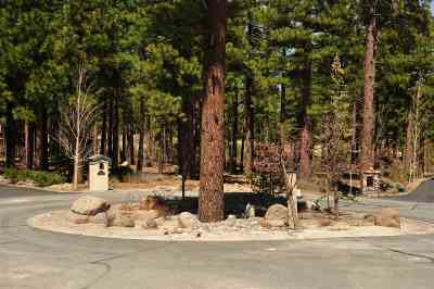 Reno Residential Lots & Land New: 111 Londonderry Ct