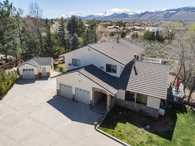 Reno Single Family Home New: 1435 Celese Lane