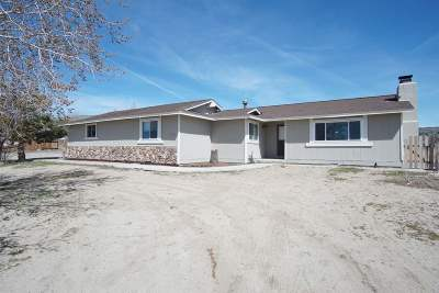 Reno Single Family Home New: 11625 Fir Dr