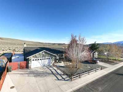 Gardnerville Single Family Home New: 1463 Mary Jo
