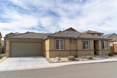 Sparks Single Family Home New: 6675 Russian Thistle Dr.