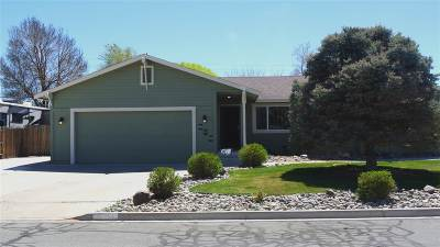 Fernley Single Family Home New: 605 Concord Circle