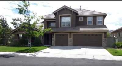 Reno Single Family Home New: 9980 Bandana Way