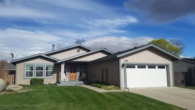Gardnerville Single Family Home New: 699 Joette Dr