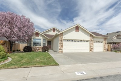 Carson City Single Family Home New: 536 Briarwood Drive