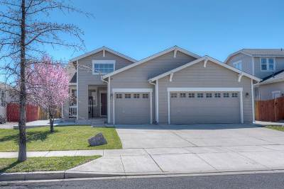 Reno Single Family Home New: 8964 Mahon Drive