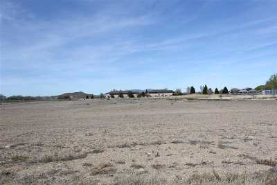 Yerington Residential Lots & Land For Sale: 700 Surprise Street