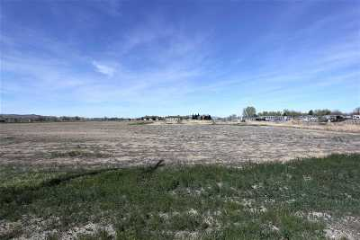 Yerington Residential Lots & Land For Sale: 700 W. Bridge Street