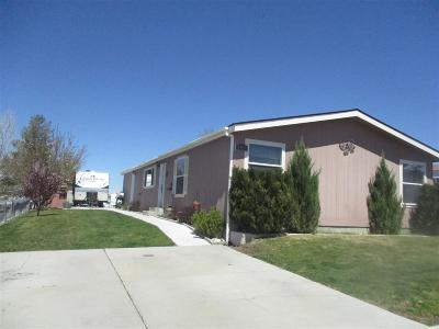 Winnemucca Manufactured Home For Sale: 3465 Moon Ln