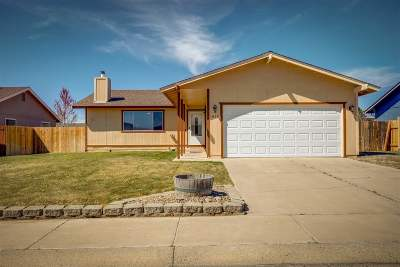 Gardnerville Single Family Home New: 1410 Berry