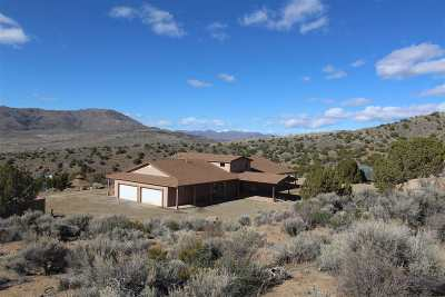 Reno Single Family Home New: 115 Boron Lane