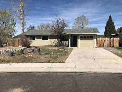 Gardnerville Single Family Home For Sale: 737 Robin Drive