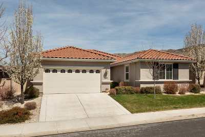 Reno Single Family Home New: 10730 Amber Falls Drive