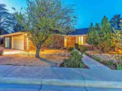 Reno Single Family Home New: 3471 Cashill Blvd
