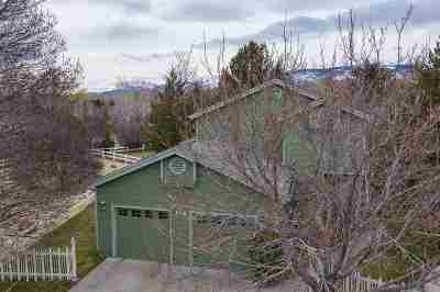 Washoe County Single Family Home For Sale: 910 Country Estates Ct