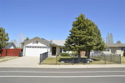 Gardnerville Single Family Home For Sale: 1366 Rancho Rd