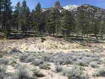 Gardnerville Residential Lots & Land For Sale: 536 Jackson Ranch Road