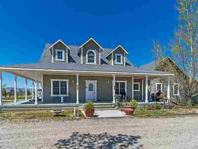 Yerington NV Single Family Home Price Reduced: $525,000