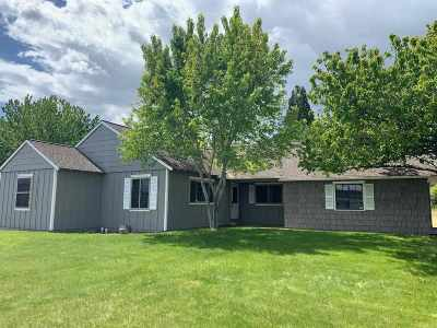 Washoe County Single Family Home For Sale: 10050 Broken Hill Rd