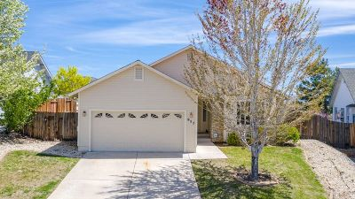 Carson City NV Single Family Home For Sale: $415,000