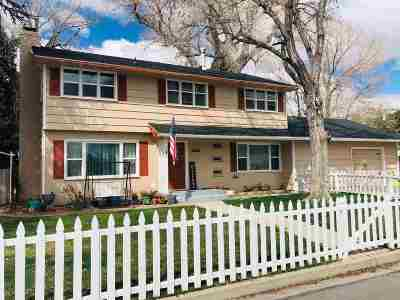 Carson City Single Family Home Price Reduced: 510 Mary St