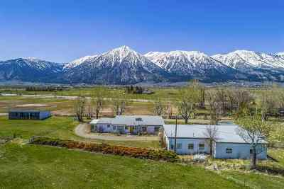 Gardnerville Single Family Home For Sale: 905 Highway 88