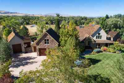 Washoe County Single Family Home For Sale: 2303 Diamond J Place