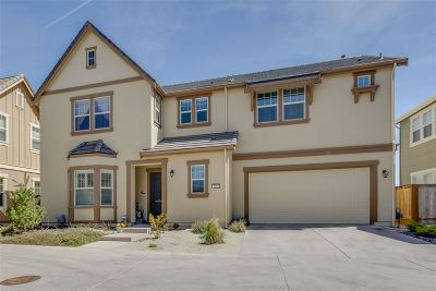 Reno Single Family Home For Sale: 1820 Heavenly View Trail