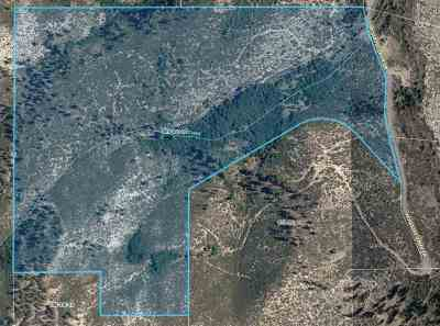 Washoe Valley Residential Lots & Land For Sale: 7805 Musgrove Creek