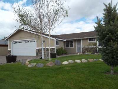 Gardnerville Single Family Home For Sale: 1352 Patricia Drive