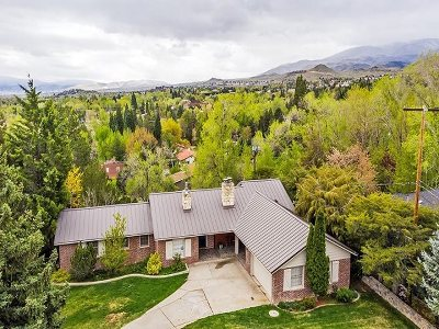 Reno Single Family Home Active/Pending-Call: 122 Greenridge Drive