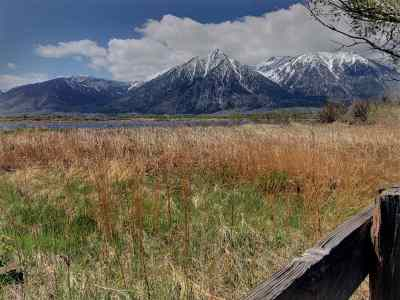 Gardnerville Single Family Home For Sale: 998 State Route 88