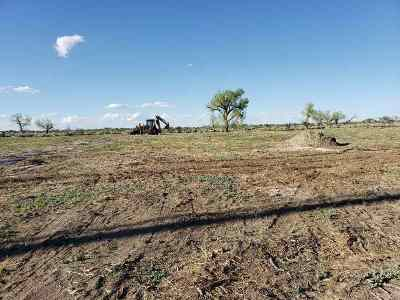 Fallon Residential Lots & Land For Sale: 2838 Wagon Trail