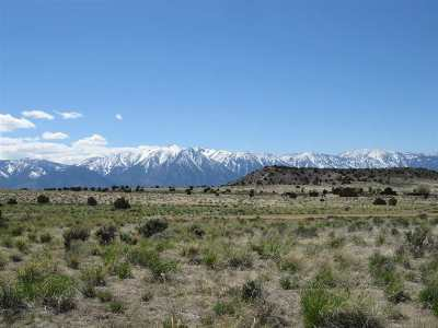 Gardnerville Residential Lots & Land For Sale: 2384 My Way